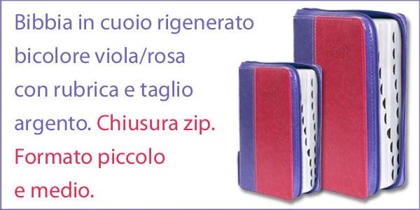 Bibbia della Nuova Diodati in cuoio rigenerato Viola/Rosa di formato medio 171.250