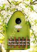 Cartoline-2-Serie-5