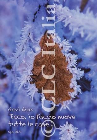 Poster CLC 08
