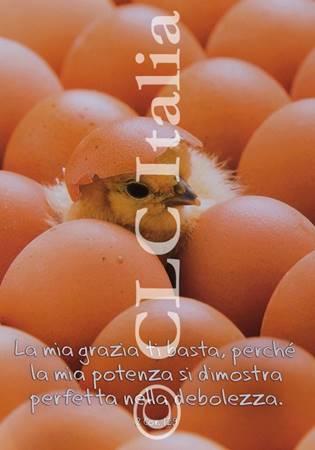 Poster CLC 12