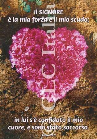 Poster CLC 15