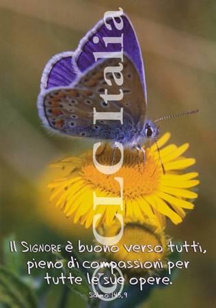 Poster CLC 18
