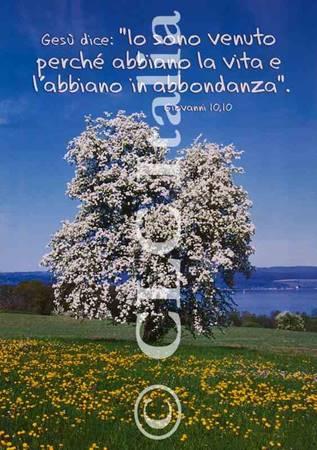 Poster CLC 21