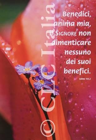 Poster CLC 25