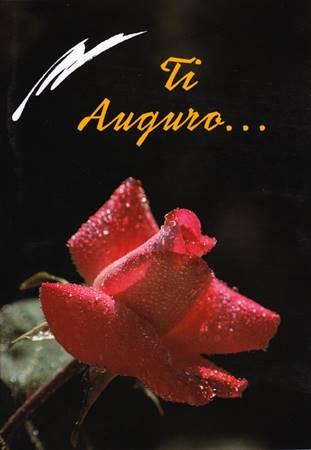 Ti auguro... - Libretto di auguri (05D 53) (Spillato)