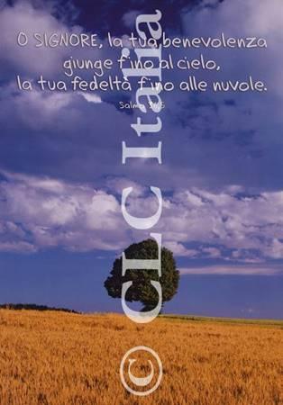 Poster CLC 32