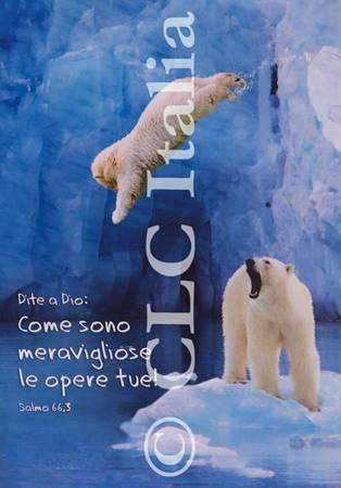 Poster CLC 44