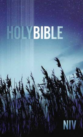 NIV Holy Bible Paperback Blue Low Cost (Brossura)