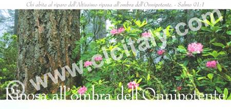 Cartolina formato panoramico con versetto Biblico - Riposa all'ombra dell'Onnipotente