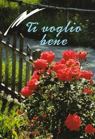 Ti voglio bene - Libretto di auguri (05D 9) (Spillato)