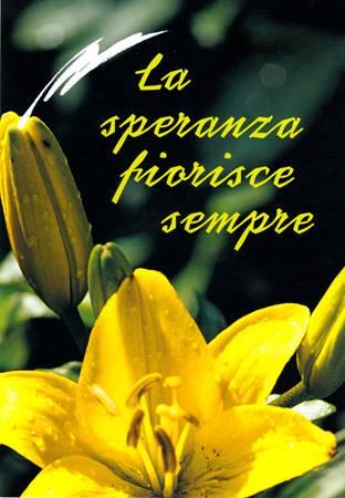 La speranza fiorisce sempre (Spillato)