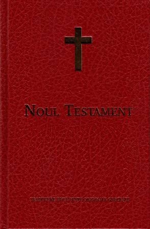 Nuovo Testamento in Rumeno (Copertina rigida)