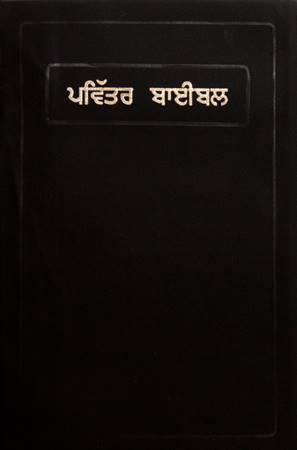 Bibbia Punjabi Media Taglio Rosso (PVC)