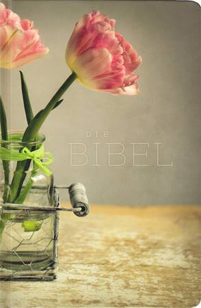 Die Bibel - Bibbia in Tedesco (Copertina rigida)