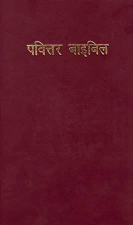 Bibbia Avadhi (Copertina rigida)