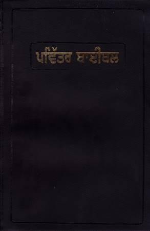 Bibbia in lingua Punjabi (PVC)