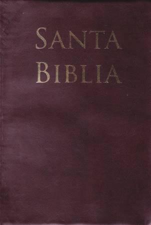Biblia Letra Grande Tamaño Manual con Referencias - RVR60 - Café (PVC)