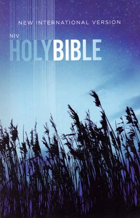 NIV Holy Bible Low cost blu (Brossura) [Bibbia Media]