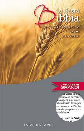Nuovo Testamento, Salmi e Proverbi a caratteri grandi NR06 - 36801 (SG36801) (Brossura)