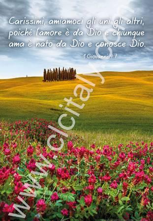 12 Poster con Versetto Biblico - Serie 5