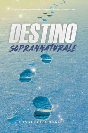 Destiny (Brossura)