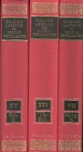 Grande Lessico del Nuovo Testamento - 16 volumi indivisibili (Copertina rigida)