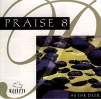 Praise 08 / Instrumental Praise 08