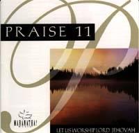 Praise 11 / Instrumental Praise 11