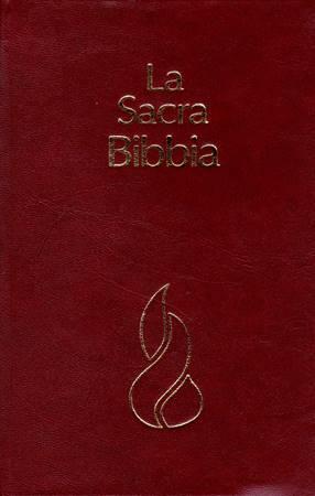 Bibbia NR94 - 31136 (SG31136) (Copertina rigida)