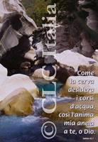 Poster CLC 24