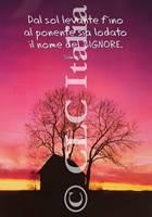 Poster CLC 46
