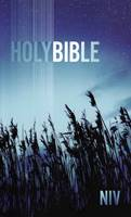NIV Holy Bible Paperback Blue Low Cost (Brossura)