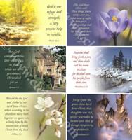 Scripture Greetings Cards - Cartoline con versetto biblico in inglese