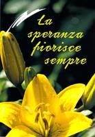 La speranza fiorisce sempre