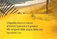 50 Biglietti con Versetto Biblico - Set n° 5