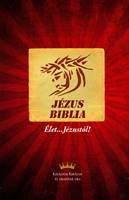 Nuovo Testamento in Ungherese in lingua corrente (Egyszerű fordítás) (Brossura)