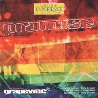 Promise - Live from Grapevine 2005