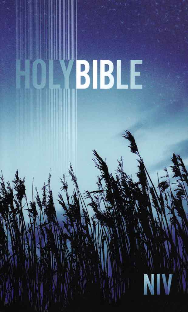 NIV Holy Bible Paperback Blue Low Cost