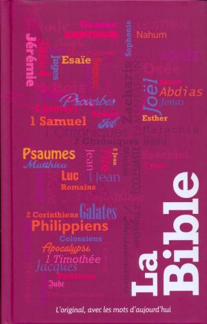 La Bible S21 - Bibbia in Francese copertina illustrata - 12212 (SG12212)