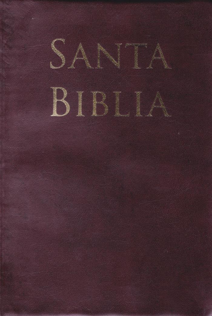 Biblia Letra Grande Tamaño Manual con Referencias - RVR60 - Café