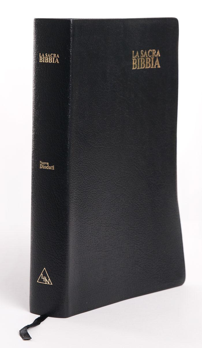 Bibbia Nuova Diodati a caratteri grandi (171.242)