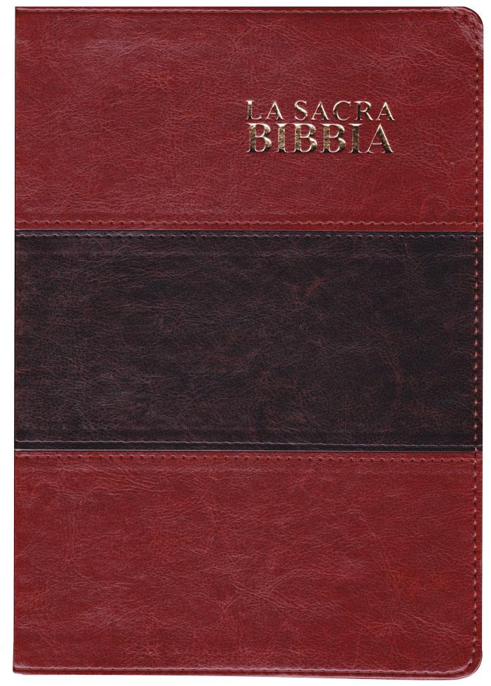 Bibbia Nuova Diodati a caratteri grandi (171.244)