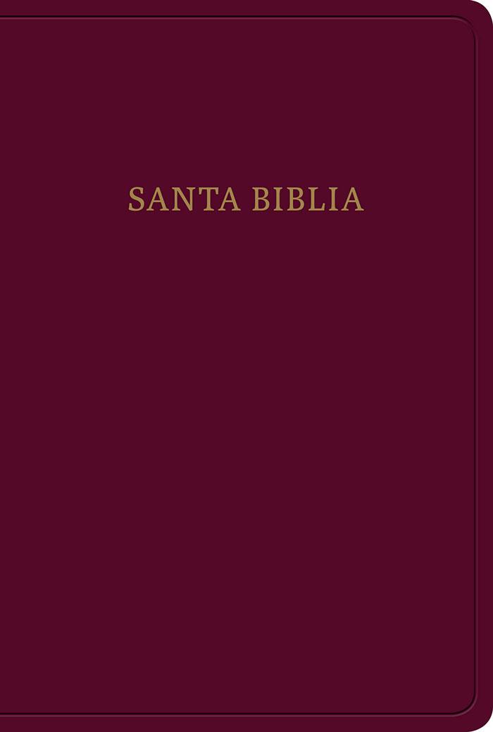 RVR60 Santa Biblia Letra grande, Tamaño manual